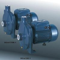 China Micro Centrifugal Pump  (DCm170M-1) on sale