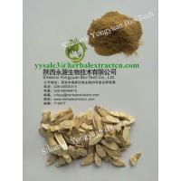China SALE! manufacture Astragalus Extract Polysaccharide 50% top quality, enhance immunity , 100% natural, for  poultry produ on sale