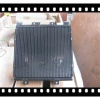 FOTON TRUCK SPARE PARTS CONDENSER ASSY,1B20081200219,TRUCK PARTS Manufactures