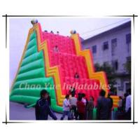 Funny Inflatable Mountain Climbing (CY-M2055) Manufactures