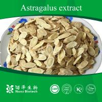 Huangqi root Extract from China Manufactures