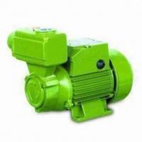 China Domestic Self Priming Water Pumps  0.75HP / 0.55KW  TPS -70 on sale