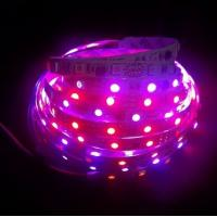 DMX Control Digital magic dream color flexible led strip light Manufactures