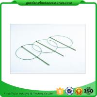 3 Rings Green Garden Plant Supports , Circular Plant Supports Plastic Coated Manufactures