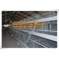 Broiler Farming Galvanized Steel Sheet Silver Battery  Broiler Chicken Cage & Chicken Coop Manufactures