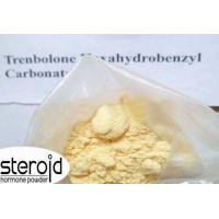 CAS 23454-33-3 Trenbolone Steroids Trenbolone Hexahydrobenzylcarbonate / Parabolan Manufactures