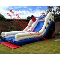 Titanic themed inflatable slide Manufactures