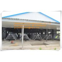 Broiler Farming Galvanized Steel Sheet Silver Battery  Broiler Chicken Cage & Chicken Coop for Chicken House Manufactures