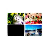 Cartoon PP PET PVC Image 3D Lentiuclar Magnets UV Printing Souvenir Manufactures