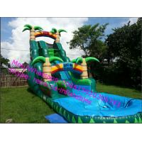 plastic inflatable slide outdoor games inflatable water slide Manufactures