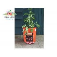 Quality Water Saving Plant Grow Bags Well Designed Vent System Strong Permeability for sale