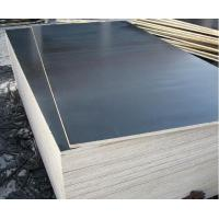 Film Faced Plywood /Shuttering Plywood with Black Film Manufactures