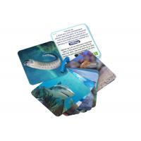 China Animial Image 3d Lenticular Sheets Learning card For Children With Alphabet on sale