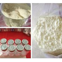 Albuterol Sulfate CAS 51022-70-9 Weight Loss Powders for Bronchial Asthma Treatment Manufactures