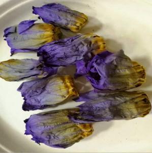 4036 Lan lian hua new crop China origin blue lotus flower Manufactures
