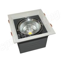 High Lumen 30W LED Beans Gall Light , LED Down Light Fixtures For Park Manufactures