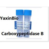 Animal Components Free Sequence Grade Carboxypeptidase B for  Protein Sequence Analysis Manufactures