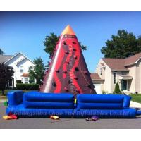 Hot Sale Giant Inflatable Jungle Climbing for Sport Game (CY-M2105) Manufactures