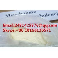 Raw Anabolic Steroid  Methyltrienolone Metribolone Powder For Muscle Gainning CAS 965-93-5