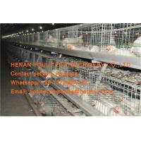Quality Broiler Farming Galvanized Steel Sheet Silver Battery Broiler Chicken Cage & for sale