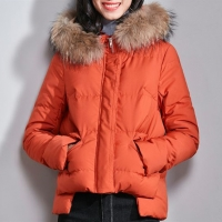 Young Yellow Polyester Bomber Jacket With Fur Hood Womens Manufactures