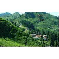 Marvelous Private Sightseeing Tours 5 Day'S  Ilam Tea Garden Trek 3636m Height Manufactures