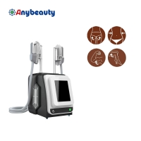 1hz Professional Ems Electric Muscle Stimulation Weight Loss Machine Manufactures