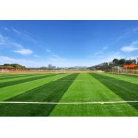 Quality Smooth Beautiful Artificial Grass Mat , High Performance Non - Infill Fake Grass Rug for sale