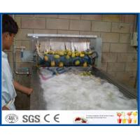 Pineapple Mango Processing Line , Fruit Juice Mango Pulp Processing Plant Manufactures