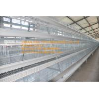 Quality New Steel Sheet Silver White Color Poultry Farming A Type Battery Layer Chicken Cage Equipment with 90-200 Birds for sale