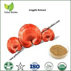 reishi mushroom extract powder,red reishi extract,red reishi mushroom extract Manufactures