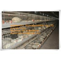 Poultry Farm Galvanized Steel Sheet Silver Automatic Broiler Chicken Cage & Chicken Coop Manufactures