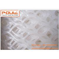 Poultry  Livestock  Farm White PE Plastic Floor Wire Mesh & Fence Mesh for Broiler Chicken Deep Litter System Manufactures