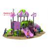 Disneyland Series Outdoor Playground Slides , Plastic Children's Outdoor for sale
