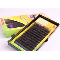 Buy cheap Black Lash Queen Eyelash Synthetic Hair Eyelash Extension 0.15mm Roughness Lash from wholesalers