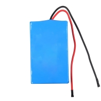 2.9Ah 24V Lithium Ion Battery Pack For Robot Sweeper Manufactures