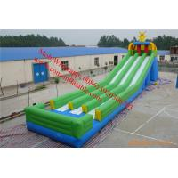 largest inflatable water slide giant inflatable slide Manufactures