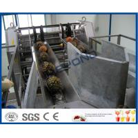 Fully Automatic PLC Control Pineapple Processing Line For Fruit Juice Processing Machines Manufactures