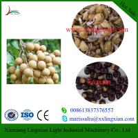 High Efficiency Longan Fruit Processing Machine Longan Peeling Machine for drink making Manufactures