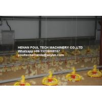 Quality Poultry&Livestock Farm Silver Steel Automatic Broiler Ground Raising System with Feed PanSystem &Drinking System for sale
