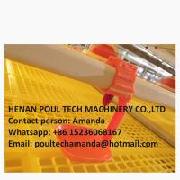 Quality Poultry & Livestock Farming Automatic Broiler Floor Raising System & Meat Chicken Deep Litter System in Chicken Shed for sale