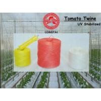 1mm 1.5mm Colorful Polypropylene Twine For Tomato Tying / Poly Twine Rope Manufactures