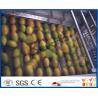 Mango Juice Factory Fruit Pulp Processing Plant , Mango Processing Equipment Manufactures