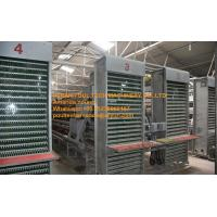 Quality Galvanized Steel Sheets Silver Poultry Farming A Type Battery Layer Chicken Cage with Automatic Feeding&Drinking System for sale
