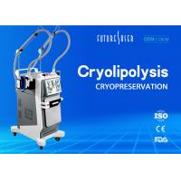 Buy cheap Skin Freeze Cryolipolysis Slimming Machine , Double Handle Fat Reduction from wholesalers