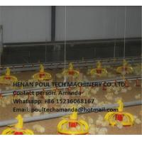 Quality Chicken Farm Silver Steel Automatic Broiler Deep Litter System with Automatic Feeding Pan Line & Nipple Drinking Line for sale