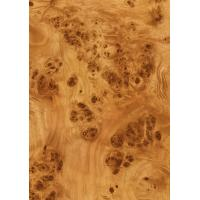 Wood Grain Decorative Foil Paper Double PU Coating , High Glossy Wood Grain Sticker Paper Manufactures