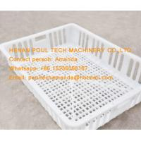 White Orange Color Plastic PE Material Broiler Chicken Carriage Cage & Transport Cage for Poultry Farm Manufactures