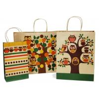 Custom Printed Paper Shopping Bags Twisted Paper Handle Bottom Cardboard Design Manufactures