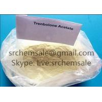 Yellow Color Muscle Growth Steroids Trenbolone Acetate Tren Acetate Raw Powder High Purity 99.9% Manufactures